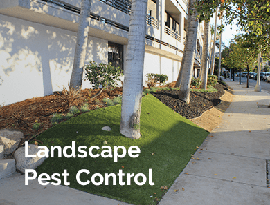 Landscape Pest Control
